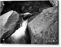Lower Vernal Stream Acrylic Print by Charmian Vistaunet