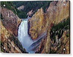 Lower Yellowstone Falls II Acrylic Print by Bill Gallagher