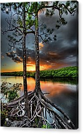 Loxachatchee Sunset Acrylic Print
