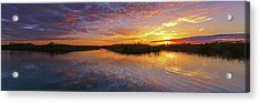 Loxahatchee Sunset Acrylic Print by Juergen Roth