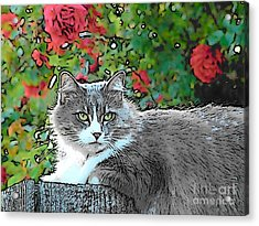 Lu With Roses Acrylic Print