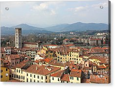 Lucca Aerial Panoramic View With Piazza Dell' Anfiteatro Acrylic Print by Kiril Stanchev