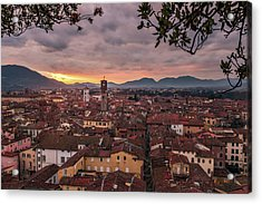 Lucca In Tuscany Acrylic Print
