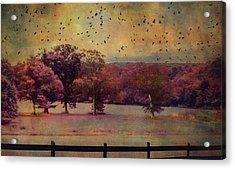 Lucid Ehereal Dream Acrylic Print
