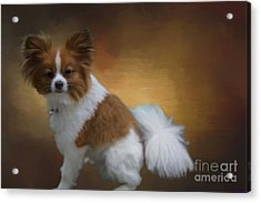 Acrylic Print featuring the mixed media Lucky by Eva Lechner