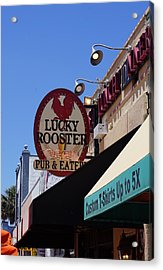 Lucky Rooster Acrylic Print