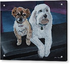 Lucy And Colby Acrylic Print