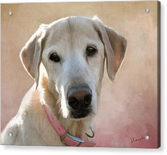 Lucy In Pink Acrylic Print
