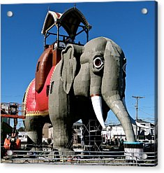 Lucy The Elephant Acrylic Print by Ira Shander