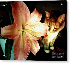 Lucy With Lily Acrylic Print