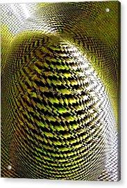 Luminous Energy 11 Acrylic Print by Will Borden