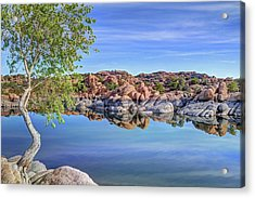 Lumps Bumps And Curves Acrylic Print by Donna Kennedy