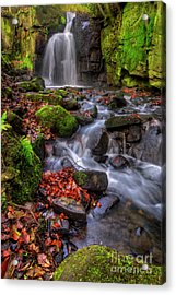 Acrylic Print featuring the photograph Lumsdale Falls 4.0 by Yhun Suarez