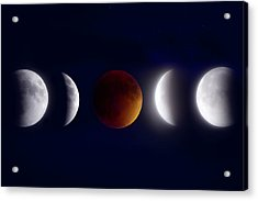 Lunar Eclipse Montage Acrylic Print by Mark Andrew Thomas