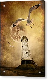 Lunar Flight Acrylic Print
