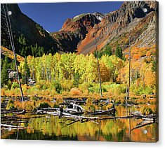 Lundy Canyon Beaver Pond Acrylic Print by Tom Kidd