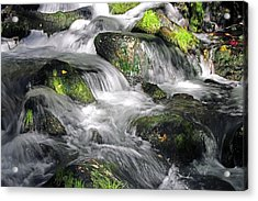 Lundy Creek 2 Acrylic Print