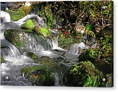 Lundy Creek 3 Acrylic Print