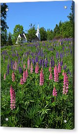 Lupin Church Acrylic Print