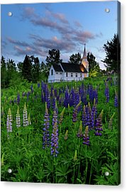 Lupines By The Church Acrylic Print