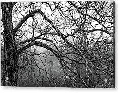 Acrylic Print featuring the photograph Lure Of Mystery by Karen Wiles