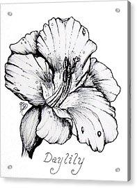 Luscious Daylily  Acrylic Print