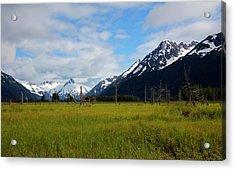 Lush Meadow In Alaska Acrylic Print