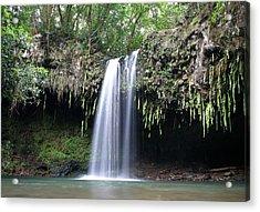 Lush Tropical Waterfall Twin Falls On Maui Hawaii Acrylic Print by Pierre Leclerc Photography