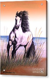 Lusitano Thunder By The Sea Acrylic Print