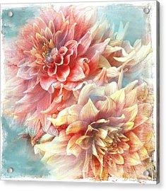 Lynia Dahlia Acrylic Print