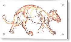 Lynx Acrylic Print by Deborah Dendler