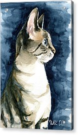 Lynx Point Cat Portrait Acrylic Print