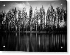 Lyrica Acrylic Print