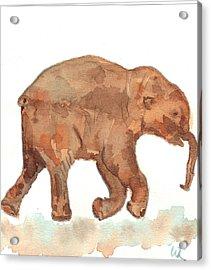 Lyuba The Ice Baby Mammoth  Acrylic Print by Warren Thompson