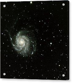 M-101, The Pinwheel Galaxy Acrylic Print by A. V. Ley
