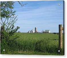 Acrylic Print featuring the photograph M Angus Farm by Dylan Punke