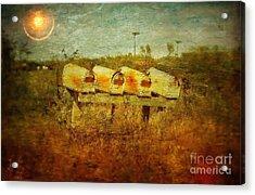 M101503 Acrylic Print by Jim Hansen