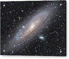 M31 - Andromeda Galaxy Acrylic Print