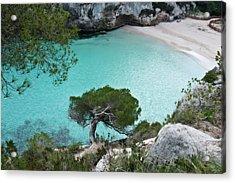 Macarelleta Turquoise Jewell By Pedro Cardona Acrylic Print