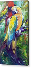 Macaw Pair Acrylic Print