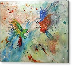 Macaws In Flight Acrylic Print