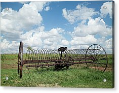 Machinery And Sky Acrylic Print by Gina Zhidov