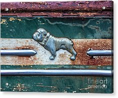 Acrylic Print featuring the photograph Mack Bulldog by Terry Rowe