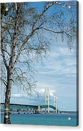 Mackinac Bridge Birch Acrylic Print
