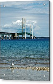 Acrylic Print featuring the photograph Mackinac Bridge With Seagull by LeeAnn McLaneGoetz McLaneGoetzStudioLLCcom