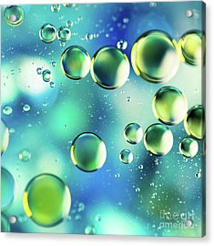 Macro Water Droplets Aquamarine Soft Green Citron And Blue Acrylic Print by Sharon Mau