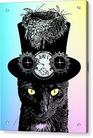 Mad Hatter Cat Acrylic Print