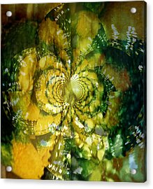 Made For Your Wall Acrylic Print by Fania Simon