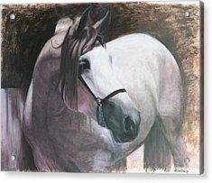 Madiera Acrylic Print by Sciandra