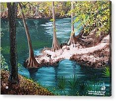 Madison Blue Springs Acrylic Print